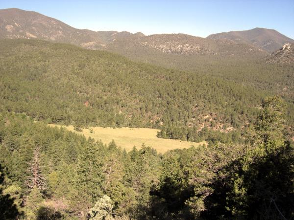 Meadow resembles the Philmont Arrowhead